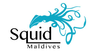 squid-maldives-logo-295x178
